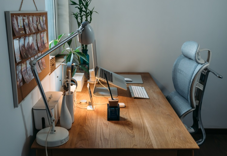 Working from Home: Ergonomic Principles